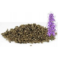Chaste Tree Berries 500g (Vitex Agnus-Castus)